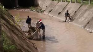 saneamiento de arroyos